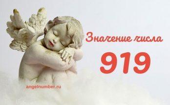 значение числа 919