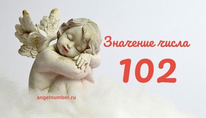 значение числа 102