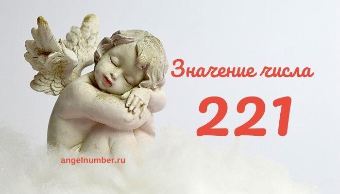 значение числа 221