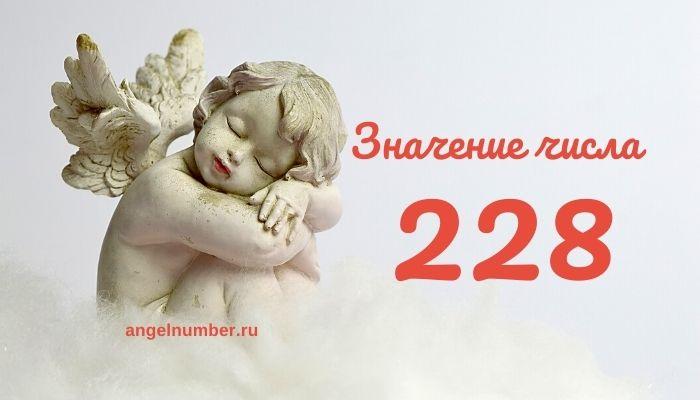 значение числа 228