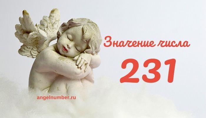 значение числа 231