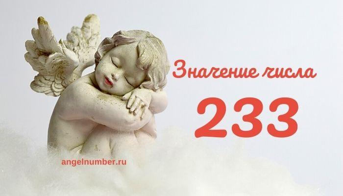 значение числа 233