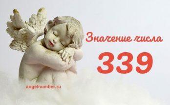 значение числа 339