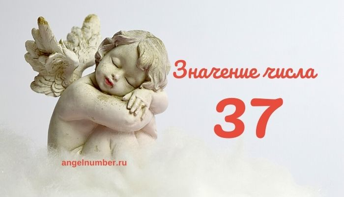 значение числа 37