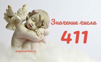 значение числа 411