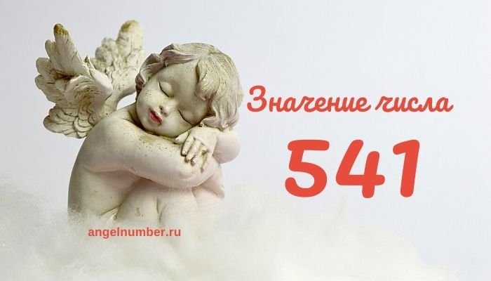значение числа 541