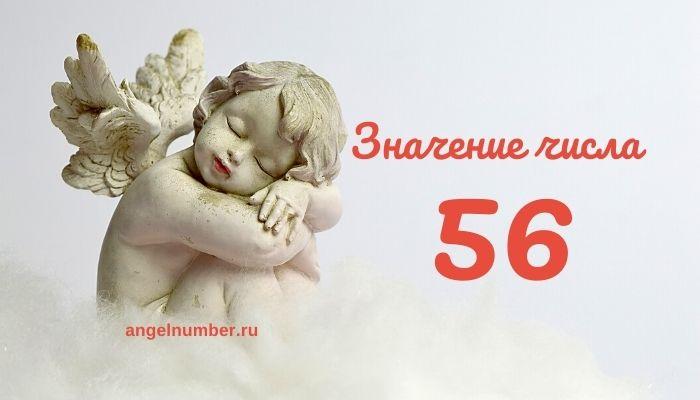 значение числа 56