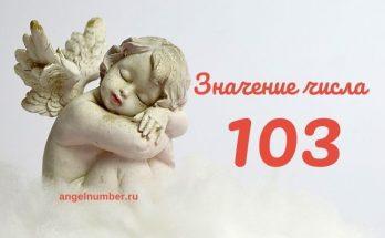 значение числа 103