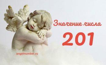 значение числа 201