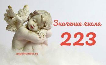 значение числа 223