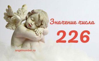 значение числа 226