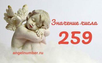 значение числа 259