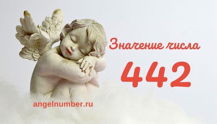 значение числа 442