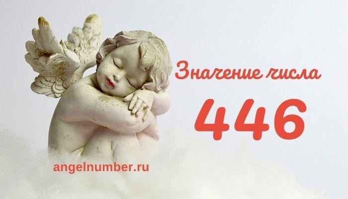 значение числа 446