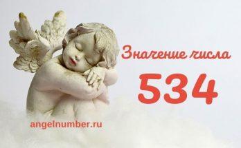 значение числа 534