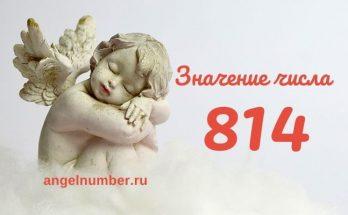 значение числа 814