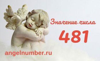 значение числа 481 ангельская нумерология