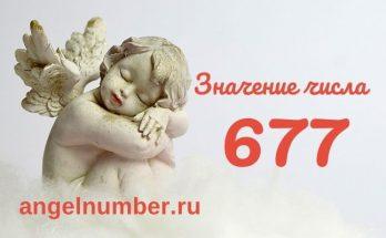 значение числа 677 ангельская нумерология