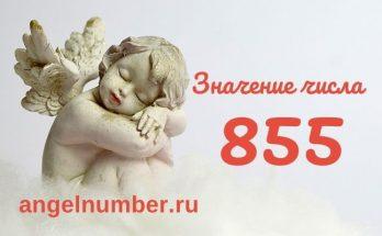 значение числа 855 ангельская нумерология