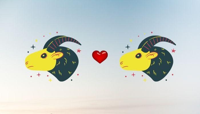 Мужчина-Козерог и женщина-Козерог - Совместимость