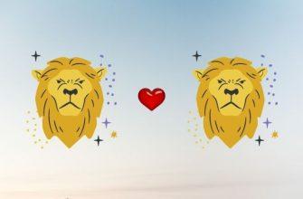 Мужчина-Лев и женщина-Лев - Совместимость