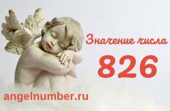 значение числа 826 ангельская нумерология